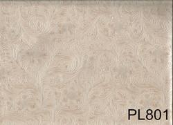 PL801