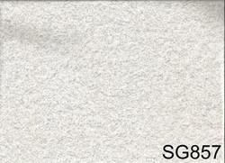 SG857