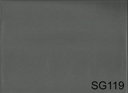 SG119