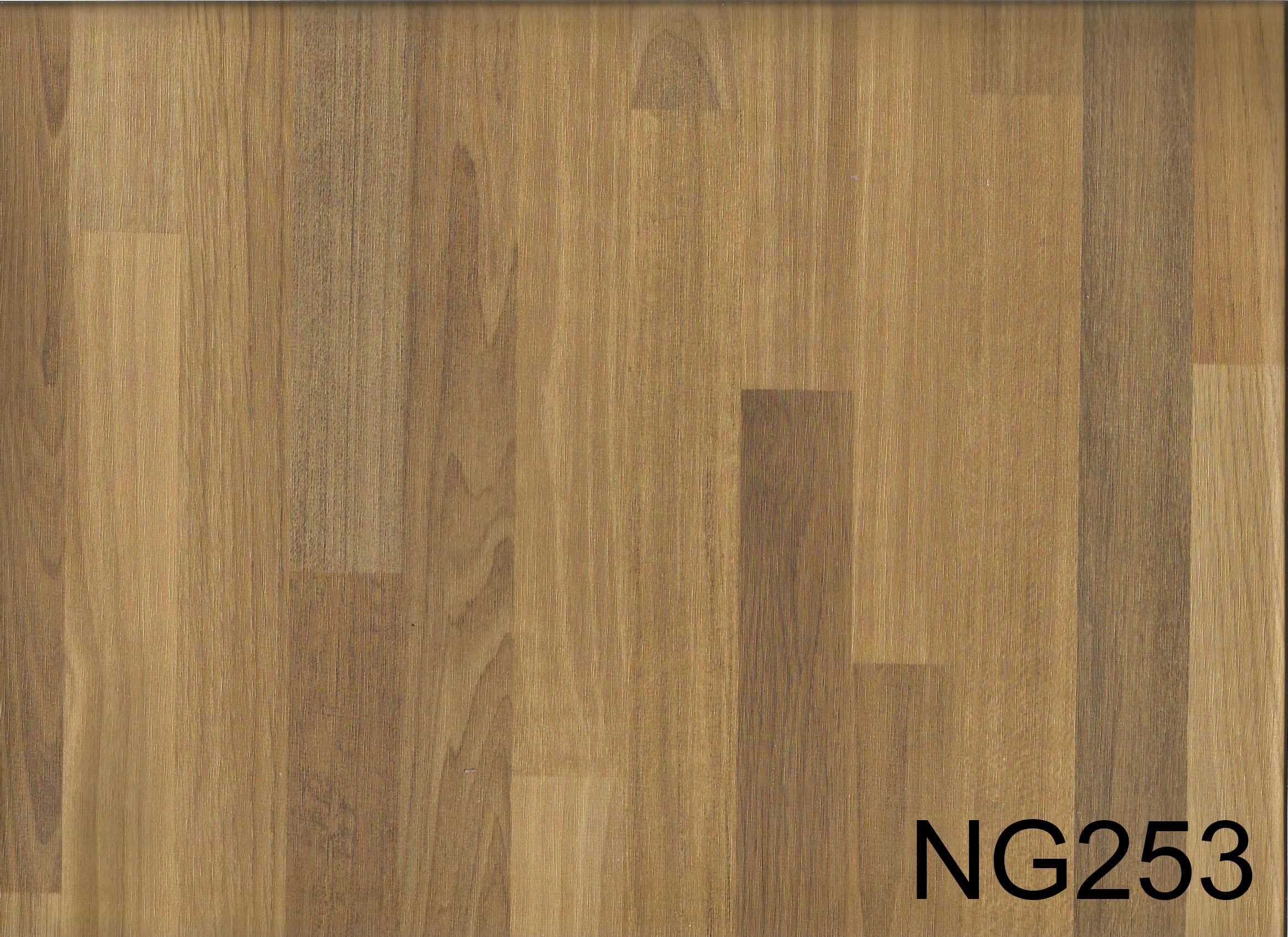 NG253