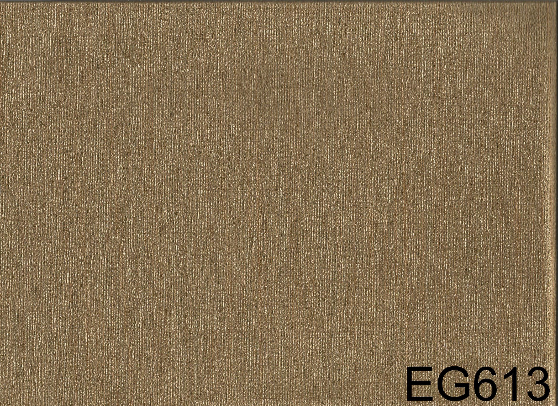 EG613