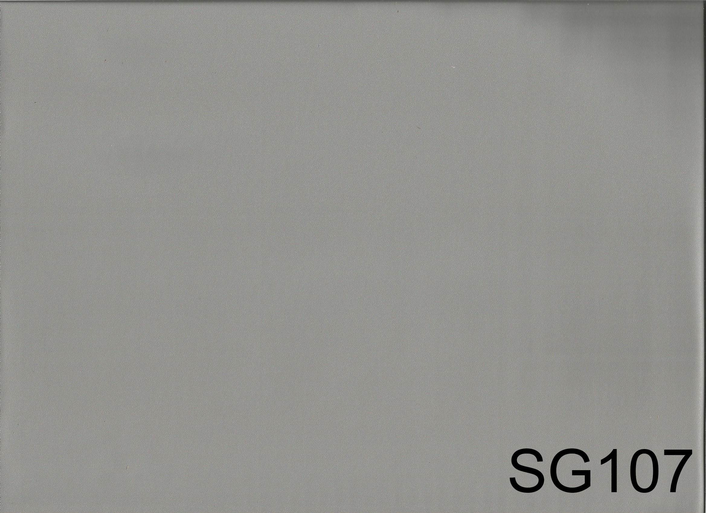 SG107