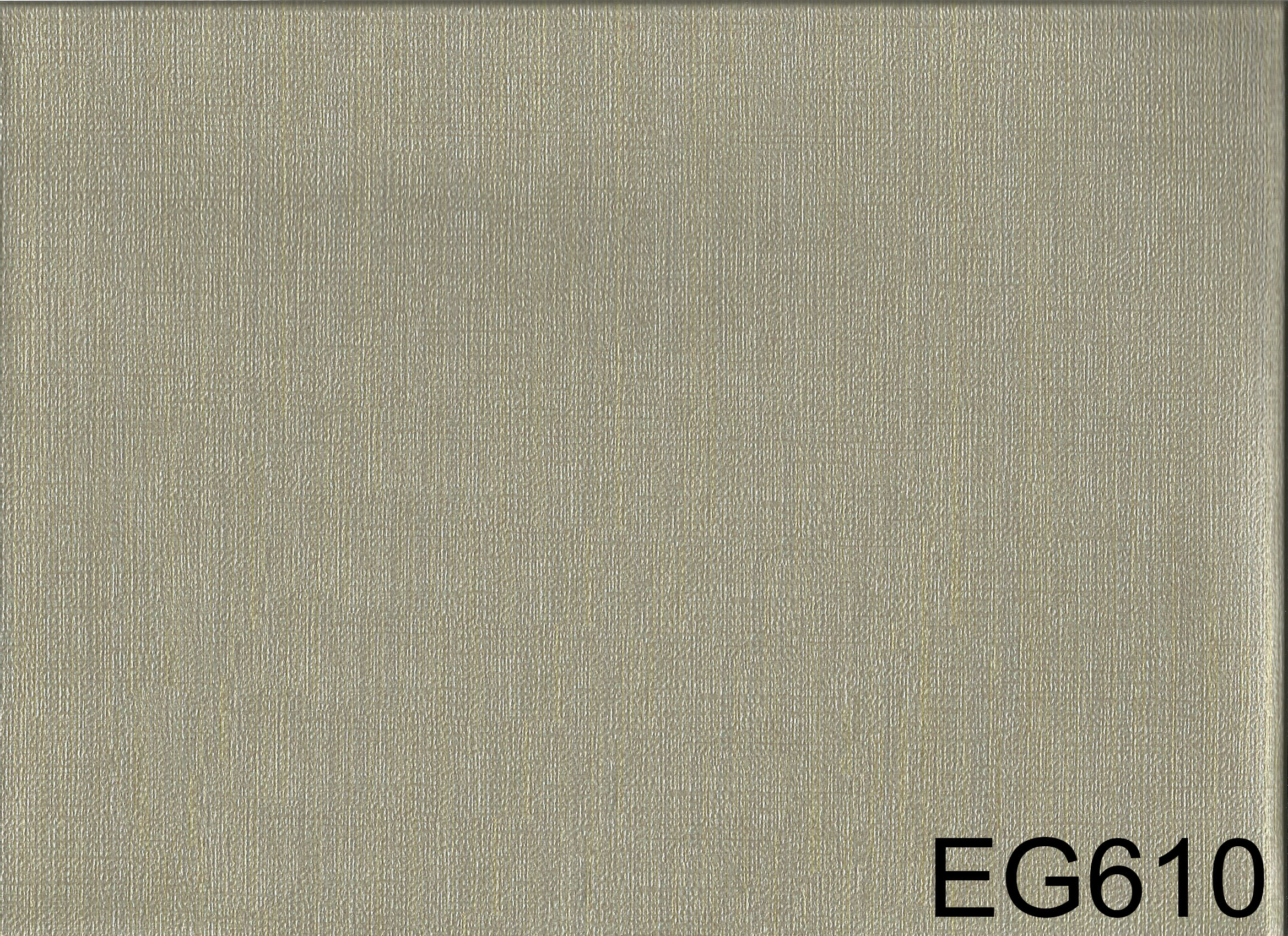 EG610