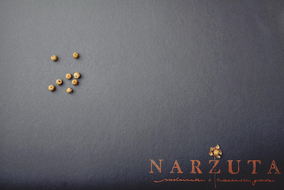 NARZUTA_PLAID_VERPAKKING.jpeg