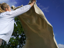 9 facts about linen