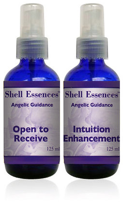 Angelic Guidance Mists 125ml