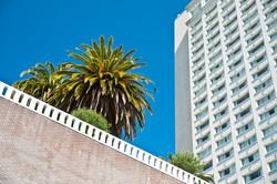 San Francisco // Sunny California