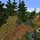 Thumbnail: Forest House Village