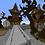 Thumbnail: Skeleton Island