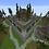 Thumbnail: Medieval Bricks Spawn 200x200 Warzone 400x400