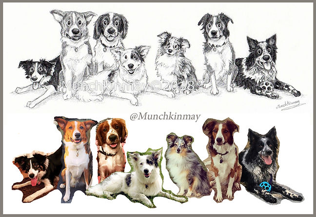 7 dogs sketch and photos Munchkinmay 201
