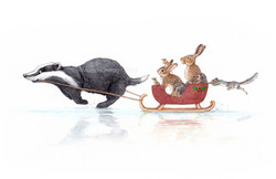 One badger open sleigh