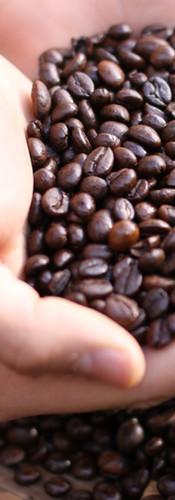 café .jpeg