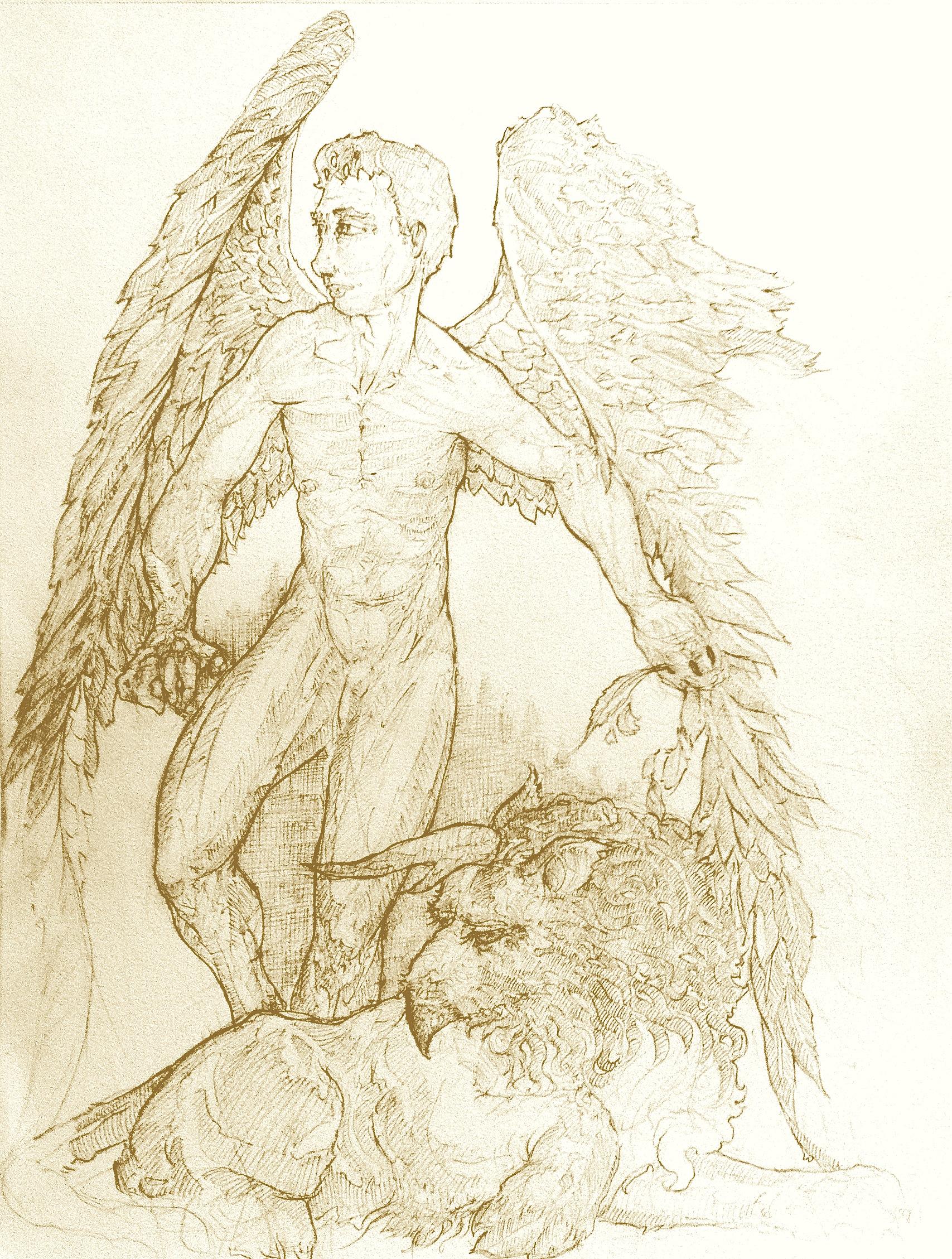 Seraphim & Griffin