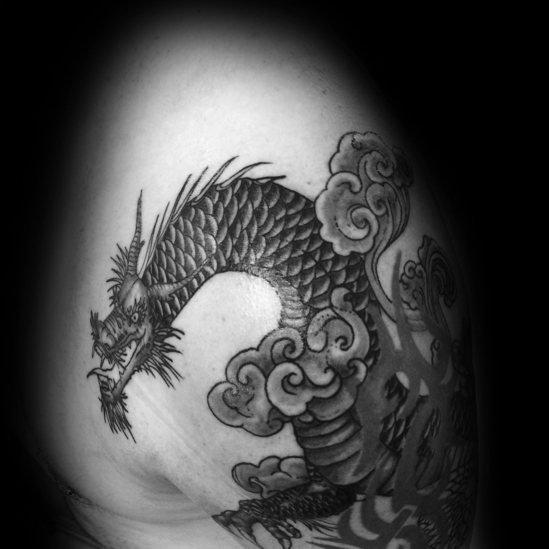 Dragonshaded2