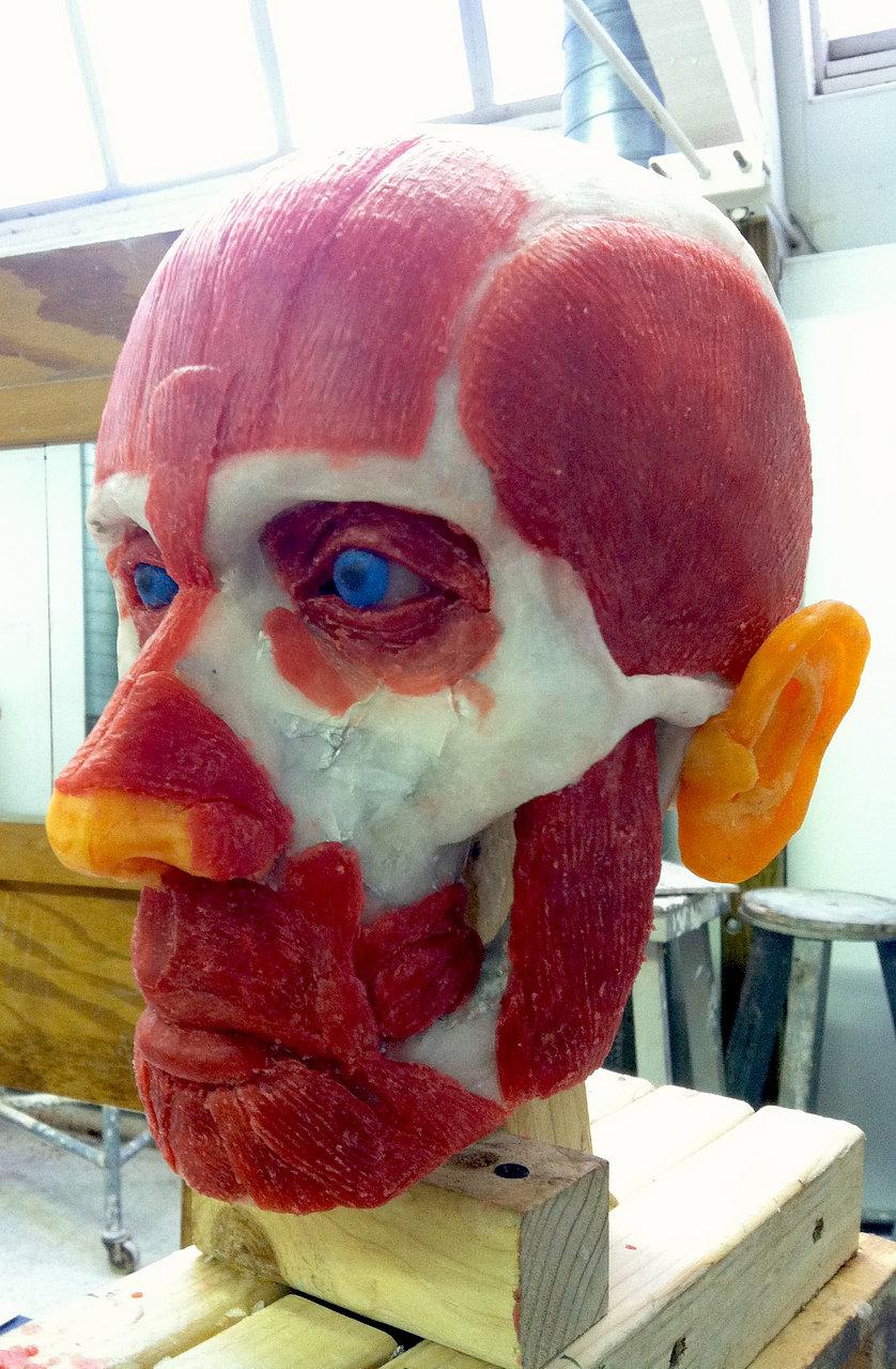 Flayed Wax Skull