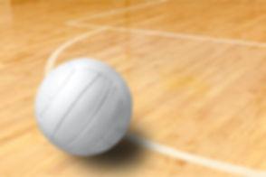Volleyball..jpg