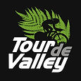 TDV_logo_highres.jpg
