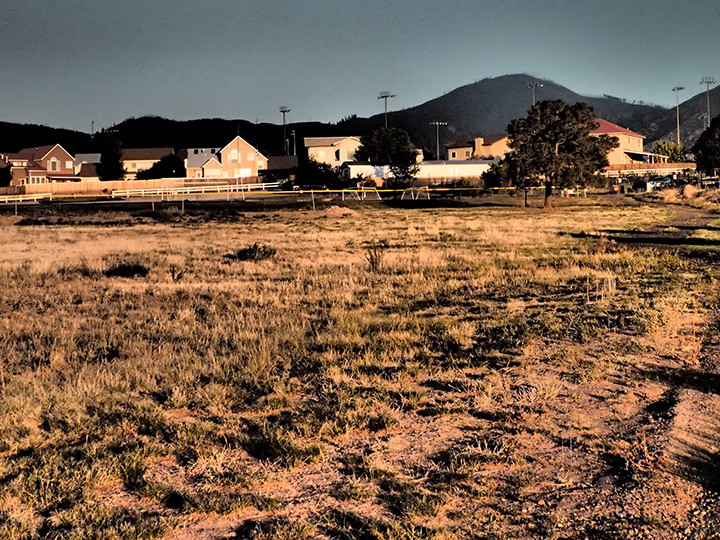 Open field in front of a housing development