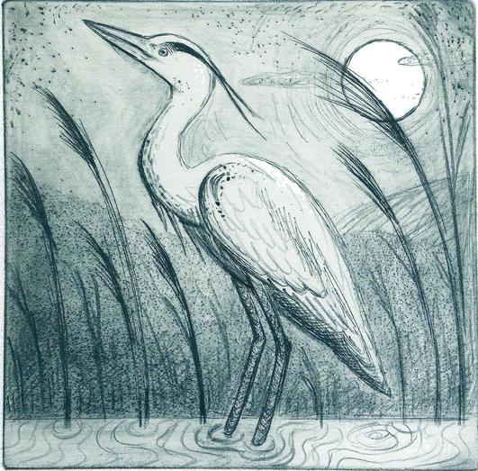 Moonlit Heron