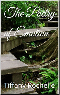 Poetry of Emotion Kindle Cover.JPG
