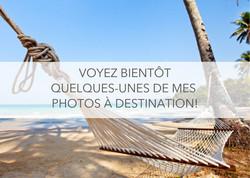 Voyez_bientôt_quelques-unes_de_mes_photo