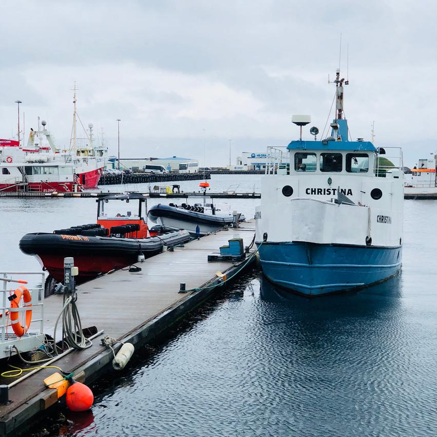 Marina Reykjavik