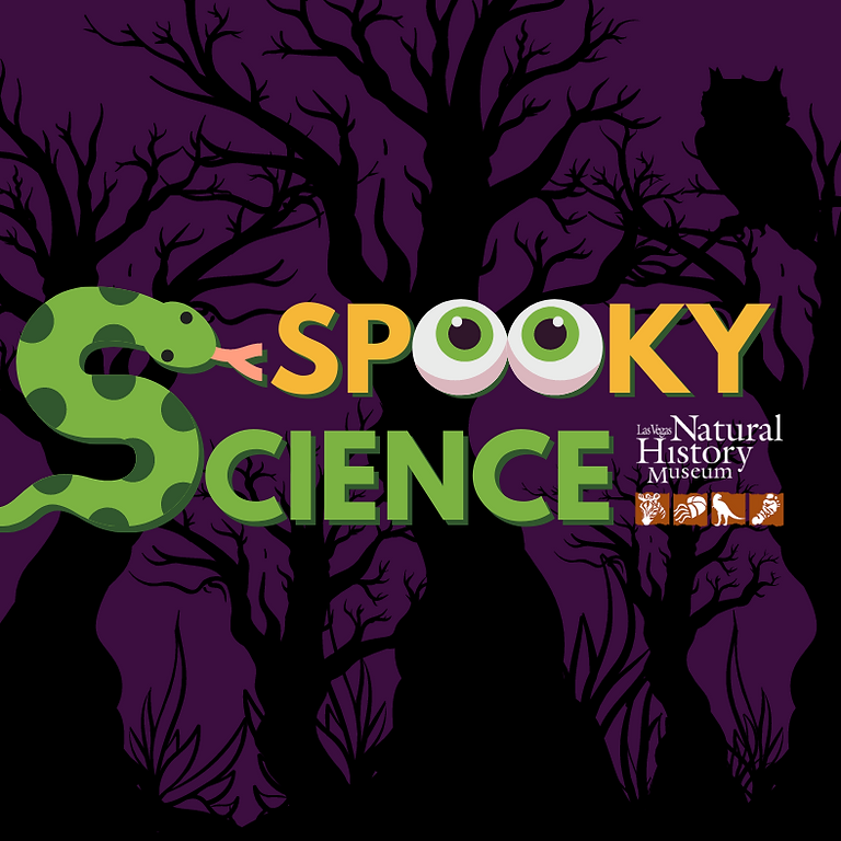 Spooky Science (Exploring Eyes & Puking Pumpkins)