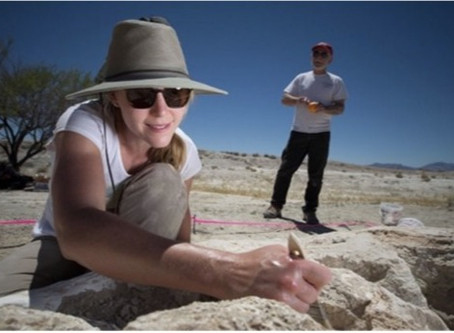 First 240 Million Year-Old Vertebrate Tracks Discovered in Nevada