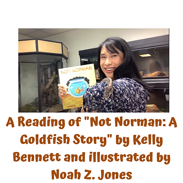 """Story Time at the Museum: """"Not Norman: A Goldfish Story"""""""