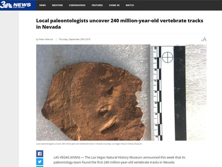 Local paleontologists uncover 240 million-year-old vertebrate tracks in Nevada