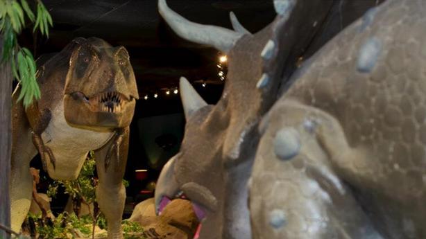 Engelstad Family Prehistoric Life Gallery