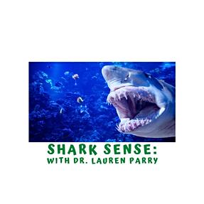 Marine Week- Shark Senses with Dr. Lauren Parry