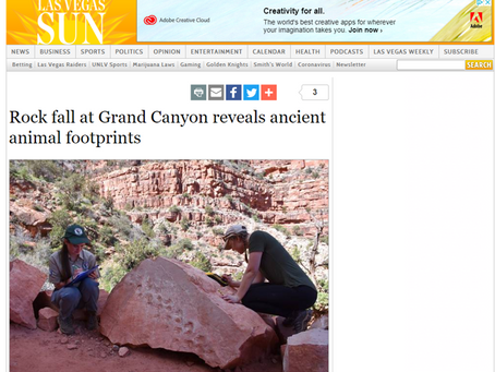Rock fall at Grand Canyon reveals ancient animal footprints