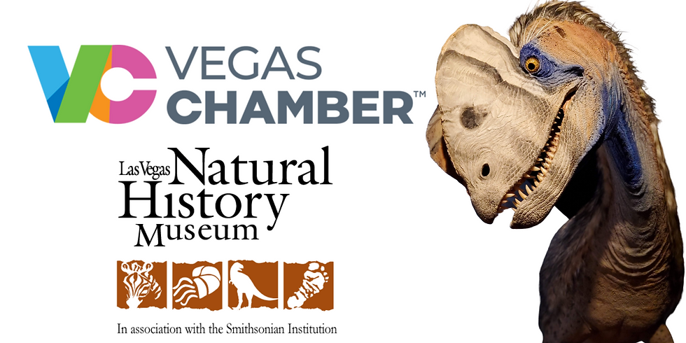 Vegas Business After Hours: Night at the Museum