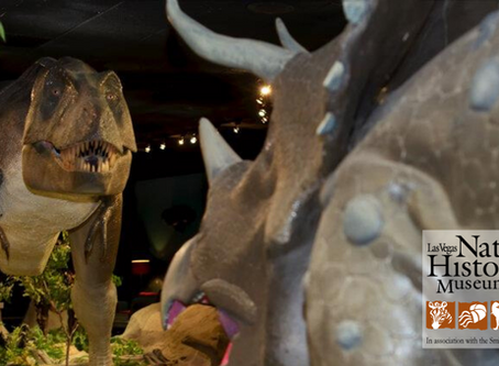 """Las Vegas Natural History Museum Reopens, Announces Upcoming Summer Traveling Exhibit """"In the Dark"""""""