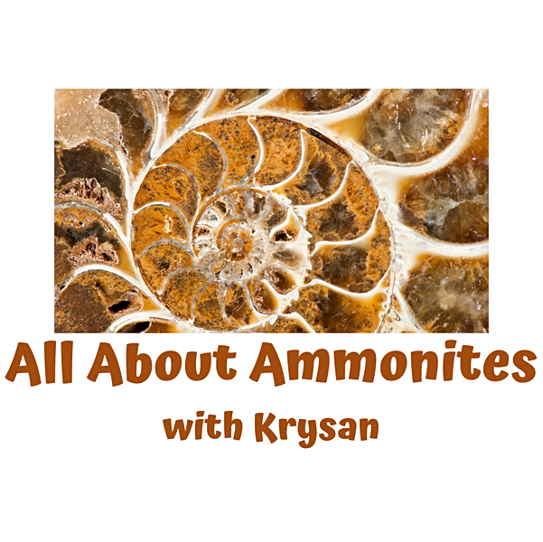 All About Ammonites with Krysan.mp4