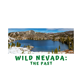 A Quick Minute in Wild NV- The Past