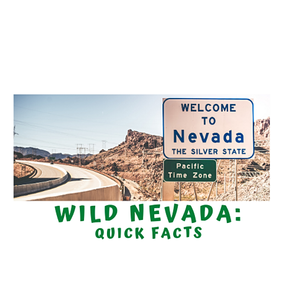 Quick Facts about Wild Nevada