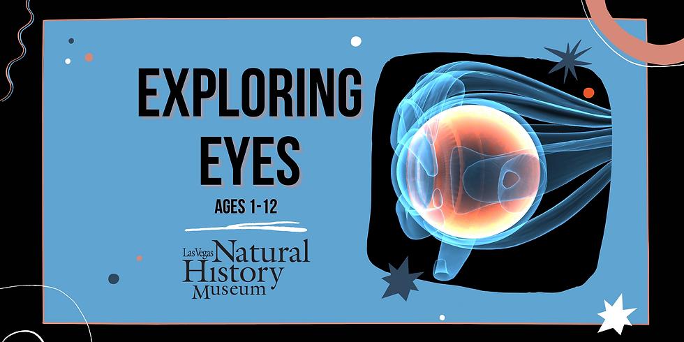Exploring Eyes Demonstration