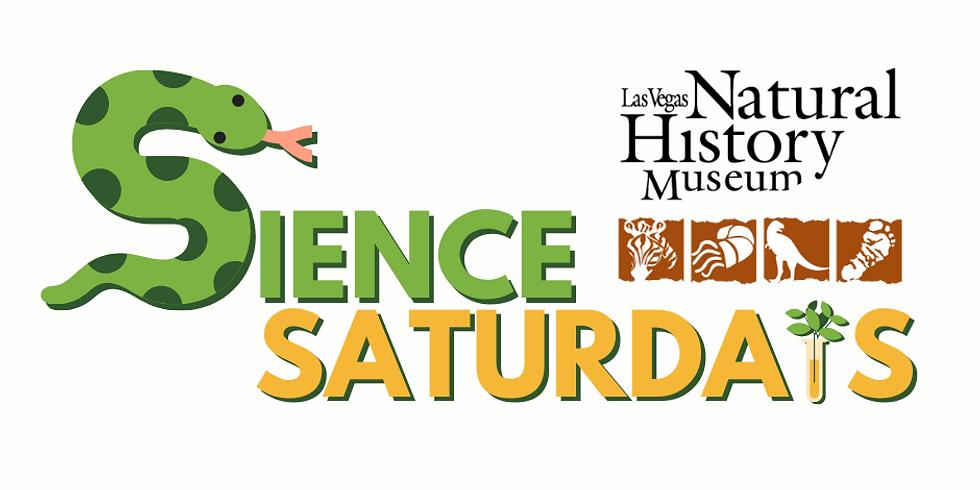 Science Saturdays