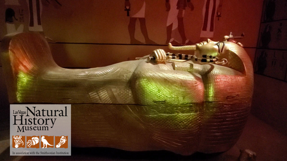 Treasures of Egypy Gallery