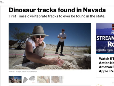 First Triassic vertebrate tracks to ever be found in the state.