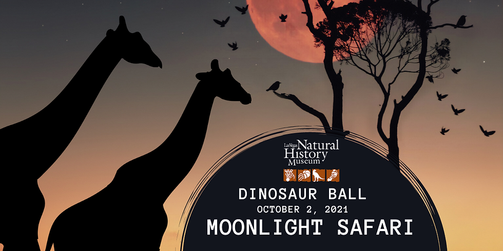 Dinosaur Ball: Moonlight Safari