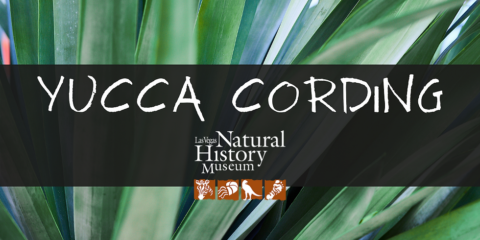 Ancient Artifacts: Yucca Cording