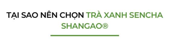 Tai-sao-nen-chon-traxanh-sencha-shangao
