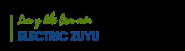Luu-y-khi-lam-mon-electric-yuzu