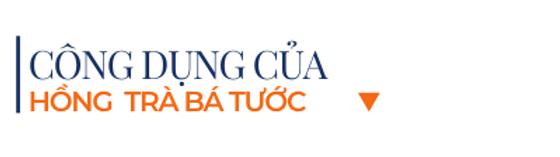 Cong-dung-cua-hong-tra-ba-tuoc