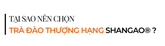 Tai-sao-nen-chon-tra-dao-thuong-hang-sha