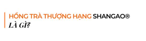 Hong-tra-thuong-hang-shangao-la-gi